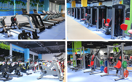 BFT Fitness Show Room