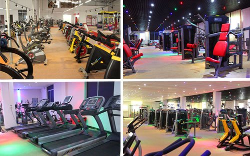 Gym equipment showroom