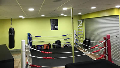 Singapore Gym Success Story  - BFT Fitness Equipment Case