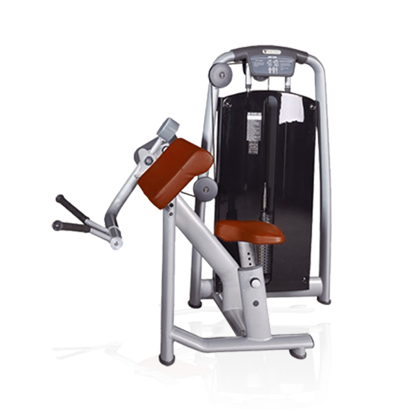 BFT-2050 Biceps Curl Machine For Sale