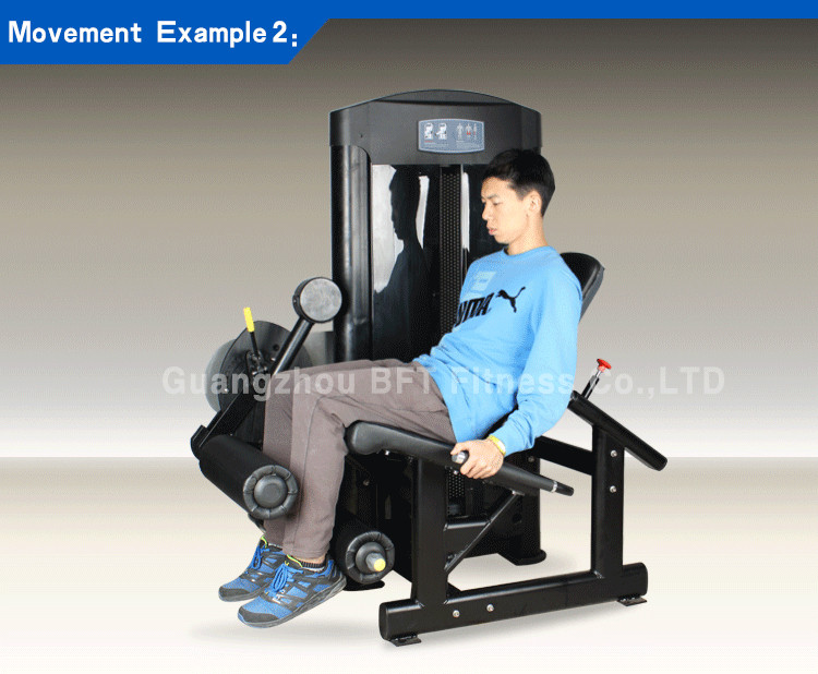 new product Seated Leg curl & Leg Extension Multifunction machine