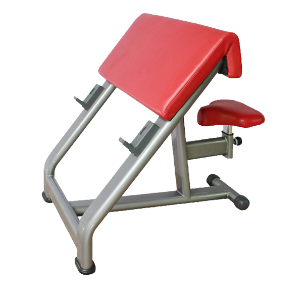 Peachy Bft 3033 Arm Curl Bench Scott Exercise Bench Bft Fitness Pdpeps Interior Chair Design Pdpepsorg